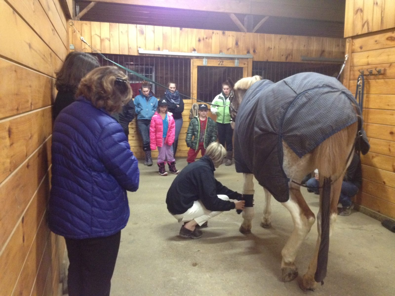horse-education-seminar