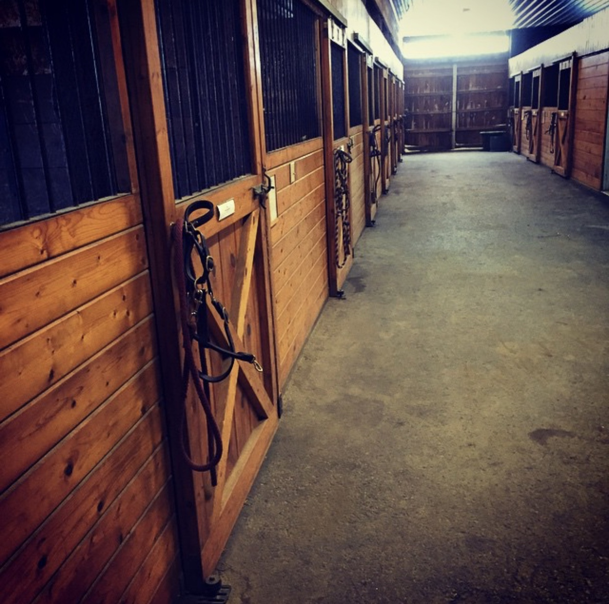 horse-stalls-available